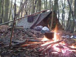 Bushcraft courses nearby